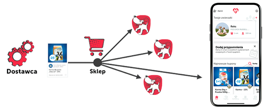 schemat działań - dostawca